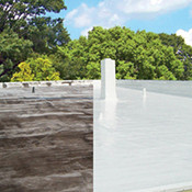 Roof – Silicone